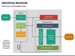 Individual Behavior PPT Slide 27