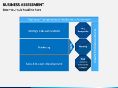 Business Assessment PPT Slide 14