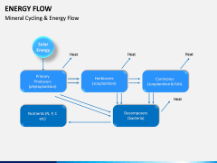 Energy Flow PPT Slide 14