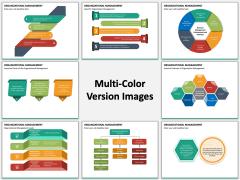 Organizational Management PPT MC Combined