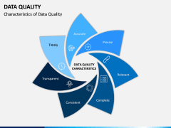 Data Quality PPT Slide 6