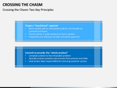 Crossing the Chasm PPT Slide 3