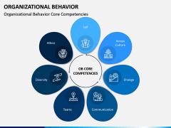 Organizational Behavior PPT Slide 9