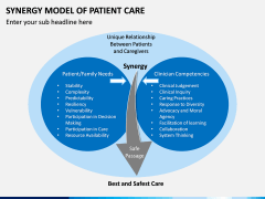 Synergy Model of Patient Care PPT Slide 1