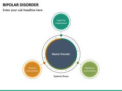 Bipolar Disorder PPT Slide 19