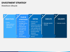 Divestment Strategy PPT Slide 13