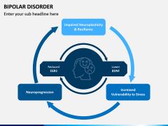 Bipolar Disorder PPT Slide 9