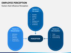 Employee Perception PPT Slide 8