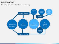 Bio Economy PPT Slide 12