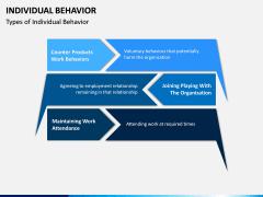 Individual Behavior PPT Slide 4