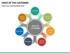 Voice of the Customer PPT Slide 20