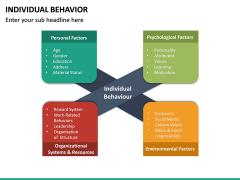 Individual Behavior PPT Slide 15