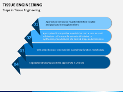 Tissue Engineering PPT Slide 10