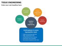 Tissue Engineering PPT Slide 30