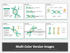 DNA string PPT MC Combined