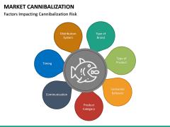 Market Cannibalization PPT Slide 13