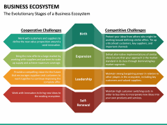 Business Ecosystem PPT Slide 39