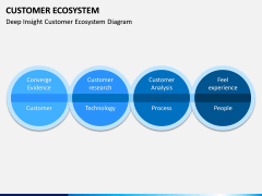 Customer Ecosystem PPT Slide 8