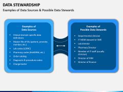Data Stewardship PPT Slide 11