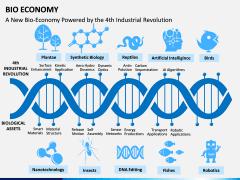 Bio Economy PPT Slide 9