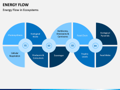 Energy Flow PPT Slide 3