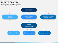 Project Strategy PPT Slide 11