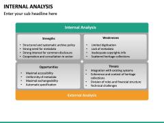 Internal Analysis PPT slide 17