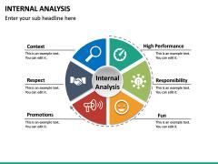 Internal Analysis PPT slide 13