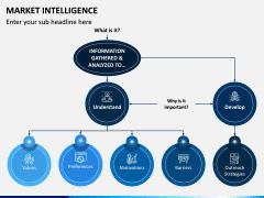Market Intelligence PPT Slide 13