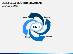 Genetically Modified Organisms (GMO) PPT Slide 4