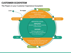 Customer Ecosystem PPT Slide 17