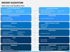 Patient Ecosystem PPT Slide 13