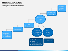 Internal Analysis PPT slide 11