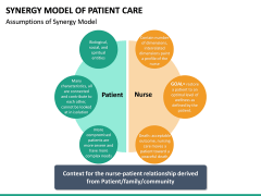 Synergy Model of Patient Care PPT Slide 9