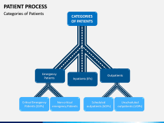 Patient Process PPT Slide 5