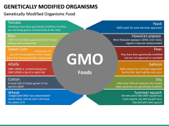 Genetically Modified Organisms (GMO) PPT Slide 19