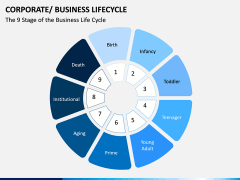 Business Lifecycle PPT Slide 12