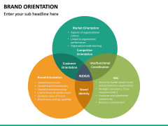 Brand Orientation PPT Slide 19