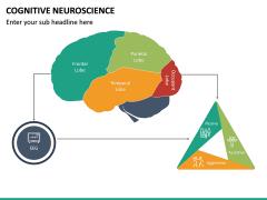 Cognitive Neuroscience PPT Slide 13