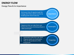 Energy Flow PPT Slide 6