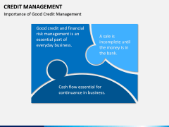 Credit Management PPT slide 17