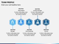 Team Profile PPT Slide 15