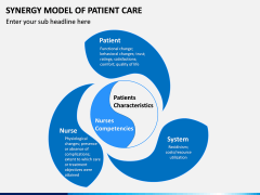 Synergy Model of Patient Care PPT Slide 3