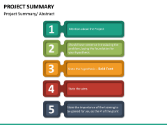 Project Summary PPT Slide 19