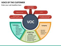 Voice of the Customer PPT Slide 19