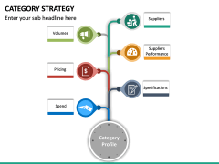 Category Strategy PPT Slide 17