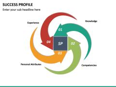 Success Profile PPT Slide 14