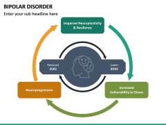 Bipolar Disorder PPT Slide 25