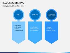Tissue Engineering PPT Slide 14