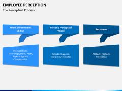 Employee Perception PPT Slide 4